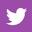 Twitter 256 Fixed